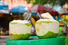Twin Coconuts Stock Photography