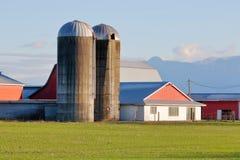 Twin Concrete Grain Silos. Tall, concrete grain silos standing beside farm buildings in a rural area royalty free stock image