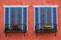 Twin decorative blue window on an old red  stucco wall Stock Image