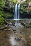 Twin Falls royaltyfria bilder