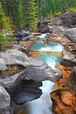 Twin Falls Creek Yoho National Park Stock Images