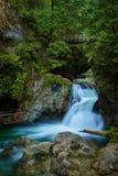 Twin Falls i Lynn Canyon Park, norr Vancouver, Kanada Royaltyfri Bild