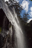 Twin Falls Springbrook Royalty Free Stock Images