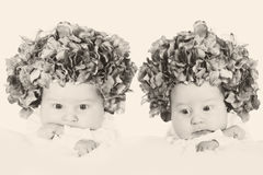 Twin flower girls Stock Photos
