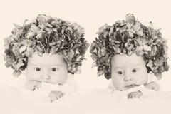 Twin flower girls Stock Photos