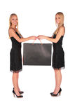 Twin girls holding bag Stock Image