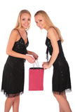 Twin girls looks in to bag 2 Stock Photography