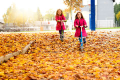 Twin girls in pink coat riding scooter on maple leaves. Royalty Free Stock Photography