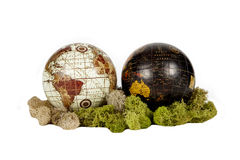 Twin Globes. Two globes in a moss bedding against a white background Stock Photography