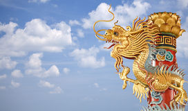 Twin Golden Chinese Dragon royalty free stock images