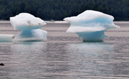 Twin Iceberg Royalty Free Stock Image