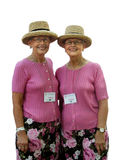 Twin ladies royalty free stock image