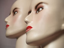 Twin Mannequin. Faces of manmequin heads for display stock photo