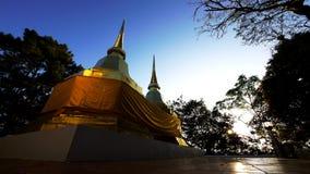Twin Pagoda Royalty Free Stock Photography