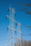 Twin Power Line Towers Framed by Branches. Two white power towers lines framed by branches, all in front of a vivid blue sky. This photo could illustrate smart Stock Photo