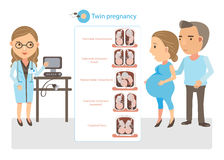 Twin Pregnancy. Doctor explained twin pregnancy. Cartoon  illustration Royalty Free Stock Images