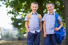 Twin schoolboys Royalty Free Stock Images