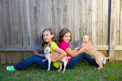 Twin sister girls playing smartphone and chihuahua dog Royalty Free Stock Photography