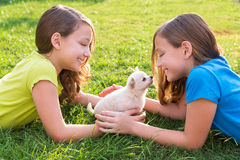 Twin sister kid girls and puppy dog lying in lawn. Twin sister kid girls and puppy dog happy playing with pet lying in backyard lawn royalty free stock photography