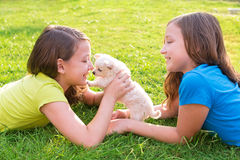 Twin sister kid girls and puppy dog lying in lawn. Twin sister kid girls and puppy dog happy playing with pet lying in backyard lawn stock photography