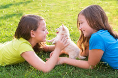 Twin sister kid girls and puppy dog lying in lawn. Twin sister kid girls and puppy dog happy playing with pet lying in backyard lawn stock images