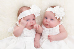 Twin sisters babies lying together on white soft fur blanket. Royalty Free Stock Photos
