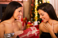 Twin sisters in a christmas night Stock Photography