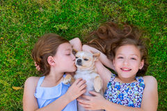 Twin sisters playing with chihuahua dog lying on lawn. Twin sisters playing with chihuahua dog lying on backyard lawn Royalty Free Stock Photo