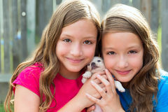 Twin sisters and puppy pet dog chihuahua playing Royalty Free Stock Image
