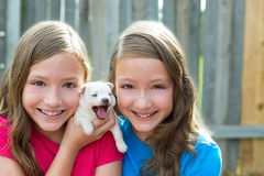 Twin sisters and puppy pet dog chihuahua playing royalty free stock photo