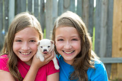 Twin sisters and puppy pet dog chihuahua playing Stock Photography