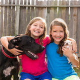 Twin sisters puppy pet dog and great dane playing Stock Images