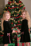 Twin sisters sharing a present vertical. Shot of twin sisters sharing a present vertical Stock Photography