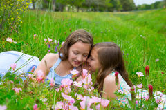 Twin sisters whispering ear on spring flowers meadow Stock Photo