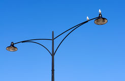 Twin street lamp with birds Stock Photo