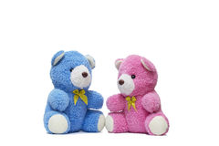 Twin Teddy Stock Image