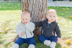 Twin Toddlers Sitting Near Tree Trunk Royalty Free Stock Photos