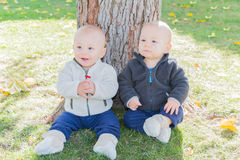 Twin Toddlers Sitting Near Tree Trunk Royalty Free Stock Photography