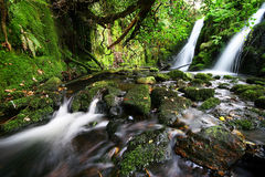 Twin Waterfall. The twin waterfalls are on a little brook on Dartmoor called Venford Brook royalty free stock images