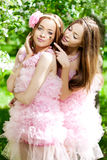 Twin women with a dragonfly Royalty Free Stock Photo