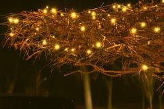 twinkle stockbild