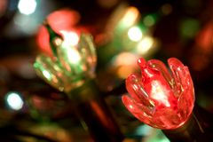 Twinkle Lights. Multicolor mini Christmas lights with focus on red foreground bulb Stock Photography