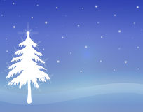 Twinkling White Tree 1 Stock Image