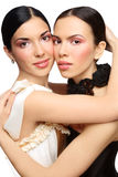 Twins. Two beautiful slim sexy young girls with clear pink make-up Royalty Free Stock Photos