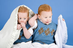 Twins Stock Image