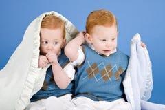 Twins Stock Image