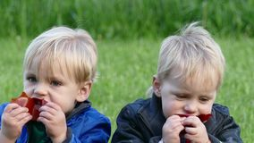 Twins with an appetite eating the treat candy stock footage