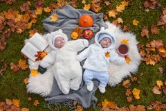 Twins in autumn park stock image