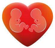 Twins Babies Love Heart Stock Image