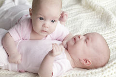 Twins babies Royalty Free Stock Photography